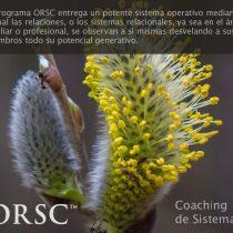 """Xerrada participativa gratuïta: """"El model ORSC, de Coaching Sistemes Relacionals i Organitzacionals"""""""