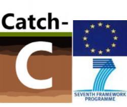 Proyecto Catch-C