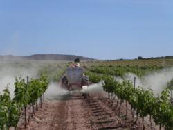 Carnet d'aplicador i manipulador de productes fitosanitaris pel nivell qualificat.