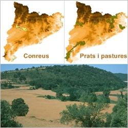A Catalunya, els espais agraris tenen també una representació important a la xarxa Natura 2000