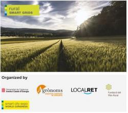 """L'Edició 2015 del Rural Smart Grids al SCEWC, sota el títol """"Transició energètica i equilibri territorial"""""""