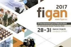 FIGAN 2017 (Zaragoza, 28-31 marzo 2017)