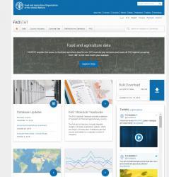 Nova web de la FAO per oferir més i millor informació sobre indicadors agrícoles