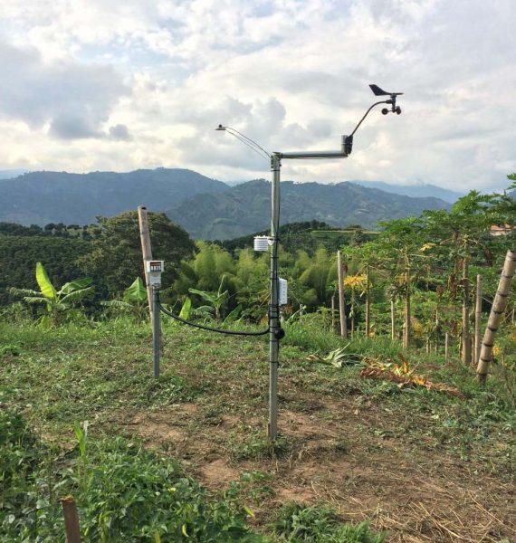 Canvi climàtic, globalització i agricultura