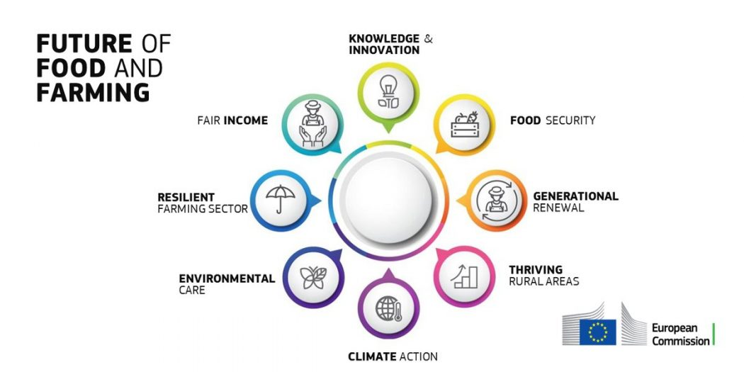 Comunicació de la Comissió Europea sobre el Futur de la PAC post-2020. Preguntes i respostes sobre el futur de l'Alimentació i l'Agricultura.