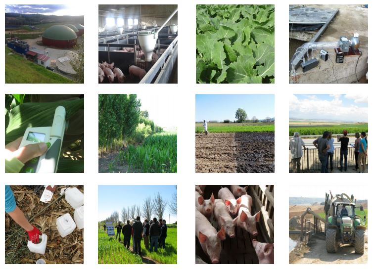 Gestió de les dejeccions ramaderes