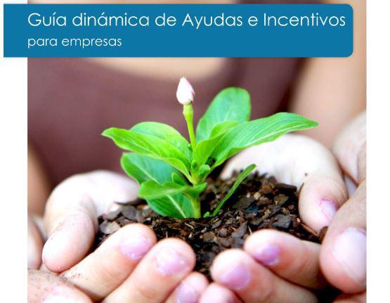 Guia dinàmica d'ajuts i incentius per a empreses