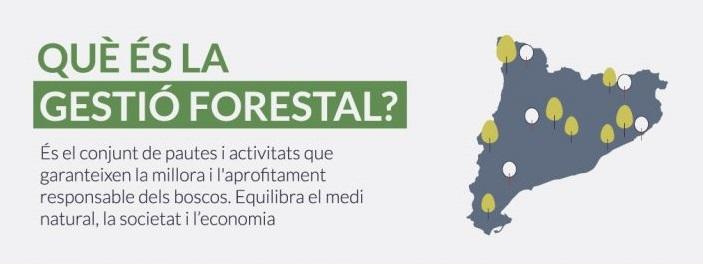 """Vídeo: La Gestió Forestal.  Campanya: """"RESPECTA L'EQUILIBRI DEL MÓN RURAL"""""""