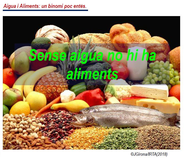 Aigua i Aliments: Un binomi essencial. By ©JGirona/IRTA(2018)