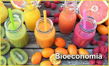 La bioeconomía como oportunidad para la economía española: la visión desde el Observatorio de Bioeconomía