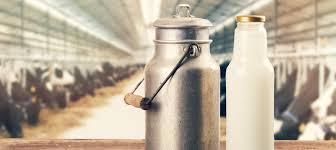 El Govern aprova el decret de venda directa de llet crua de vaca
