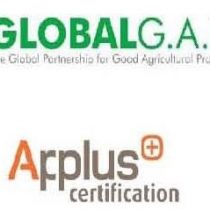 CURS AUDITOR INTERN GLOBALG.A.P V5.1