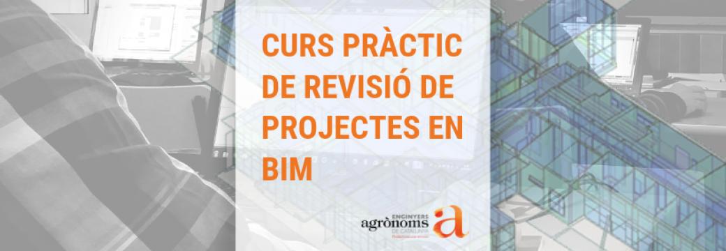 Curs pràctic de Revisió de Projectes en BIM