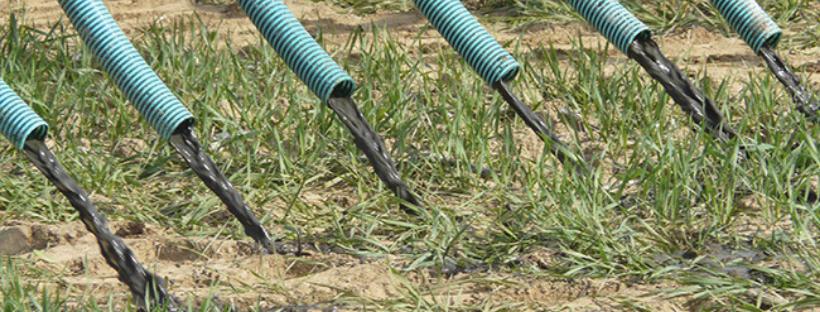"""Nou projecte LIFE: """"AGRICLOSE"""" del DARP, amb la finalitat de promoure noves estratègies de fertilització"""