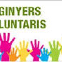 """Trobada Anual dels Enginyers Voluntaris. Ponència: """"La transformació digital en les ONG's"""""""