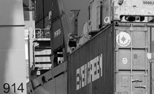 Visita tècnica al PIF del Port de Barcelona