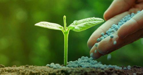 Publicat nou Reglament Europeu sobre la disposició al mercat dels productes fertilitzants
