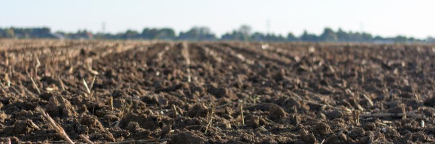 Publicada al DOGC la Llei 3/2019 dels espais agraris