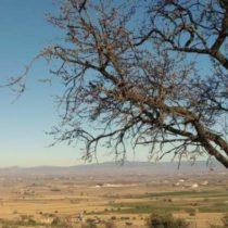 Jornada:  L'alimentació i el territori