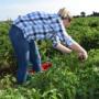 Jornada tècnica: Dia Internacional de la Dona Rural