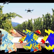 II Jornada científica i tècnica de teledetecció i agricultura de precisió