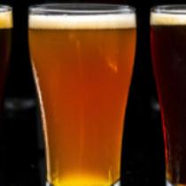 Curs: Guia de les pràctiques correctes d'higiene per a petits productors de cervesa