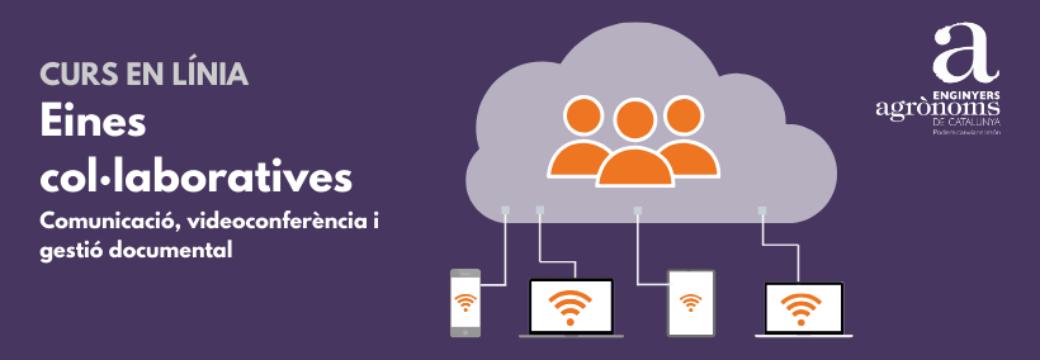 Curs en línia: Eines col·laboratives (comunicació, videoconferència i gestió documental)