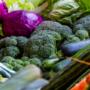 Consulta pública prèvia sobre l'Avantprojecte de Llei pel qual es modifica la Llei 12/2013, de 2 d'agost, de Mesures per a millor el funcionament de la cadena alimentària