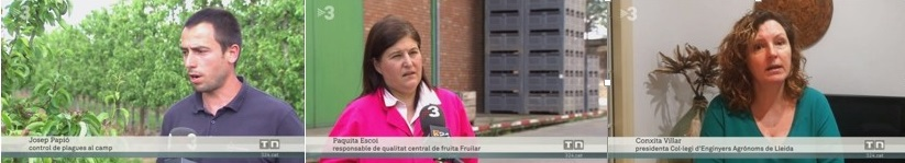 TV3: Els enginyers agrònoms, decisius per garantir el subministrament dels aliments enmig de la Covid