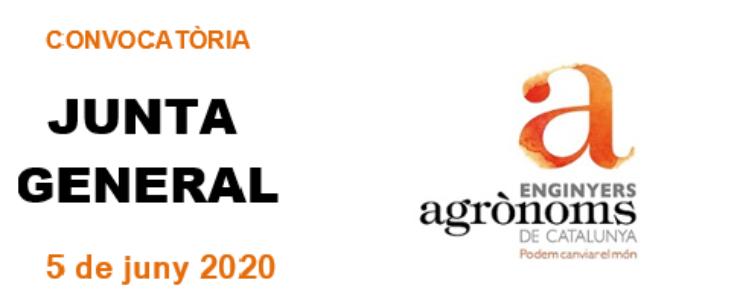 Junta/Assemblea General  5 de juny 2020