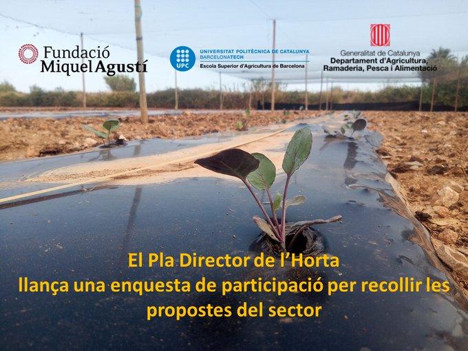 El Pla Director de l'Horta llança una enquesta de participació per recollir propostes del sector