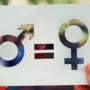Es promou la implementació de plans d'igualtat a les empreses