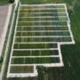 RECOMEX. Resultats d'assaigs i innovacions en cultius extensius d'hivern