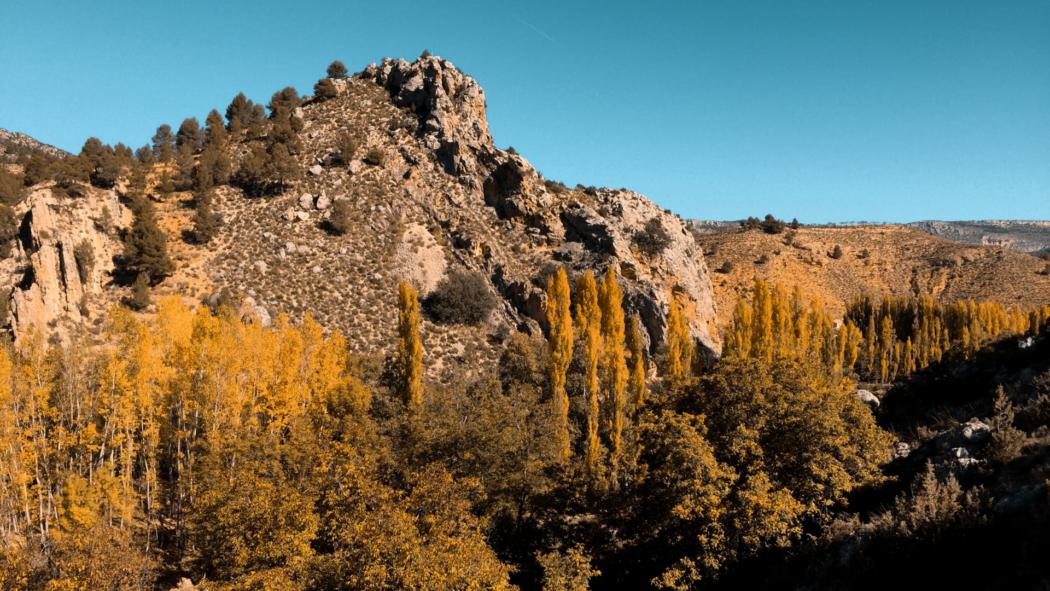 Aprovada l'Estratègia Nacional d'Infraestructura Verda i de la connectivitat i Restauració Ecològiques, clau per recuperar els ecosistemes espanyols i connectar-los entre si