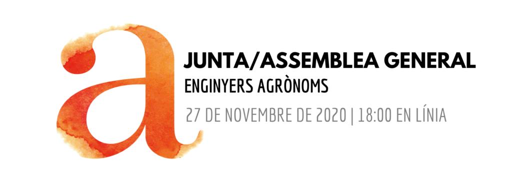 Junta General d'Enginyers Agrònoms 27 de novembre 2020 – virtual –