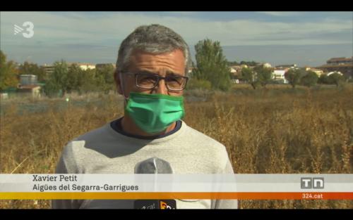 El company Xavier Petit al telenotícies comarques