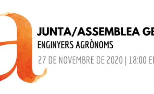 Junta General 27 novembre 2020