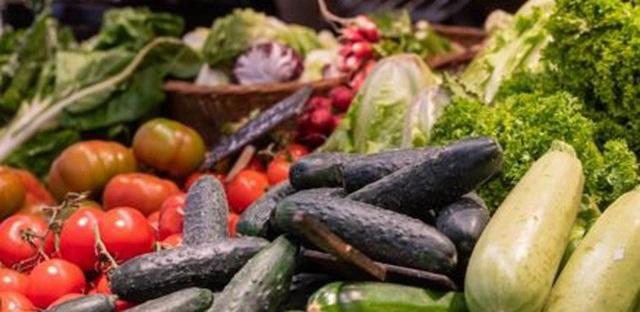 Es presenta el Pla estratègic de l'alimentació de Catalunya 2021-2026