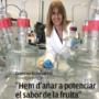 """Entrevista a la companya Gemma Echeverria a la revista AFRUCAT: """"cal identificar la fruita en funció del seu sabor"""""""