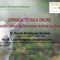Jornades tècniques de produccions animals. El segell de certificació de Benestar Animal en Oví i Caprí