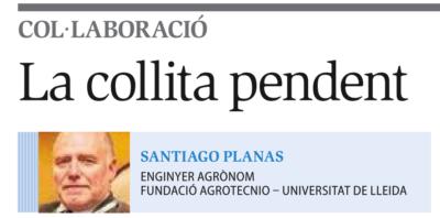 """Publicat article  """"La collita pendent"""" del company Santiago Planas al Diari Segre"""