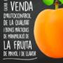 Publicada la Guia per a punts de venda d'autocontrol de la qualitat i bones pràctiques de manipulació de la fruita de pinyol i de llavor