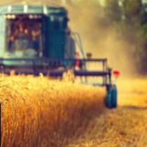 AGRIMAX: Webinar sobre valorització de subproductes agraris a través de biorefineries. Sessió formativa.