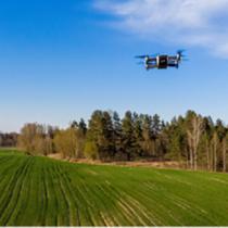 Jornada d'intercanvi d'experiències entre grups operatius i projectes innovadors  sobre sòls