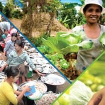 Participa als fòrums públics dels  esdeveniments  previs a la cimera de sistemes alimentaris