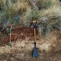 Jornada: La restauració de sòls amb esmenes orgàniques