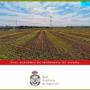 Presentació de l'estudi: Emissions de gasos efecte hivernacle en el sistema agroalimentari i petjada de carboni de l'alimentació a Espanya