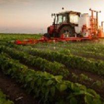 """Jornada: """"Brexit: Tot el que necessites saber sobre el sector agroalimentari"""""""