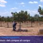 Mancança actual d'Enginyers Agrònoms, necessaris per a la tecnologia de precisió i altres necessitats del sector agroalimentari