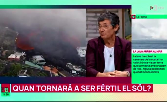 La companya Rosa Maria Poch ens parla a TV3 de la fertilitat del sòl després que hagi passat la lava volcànica